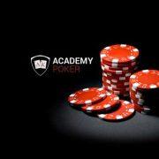 Основы работы Академии покера