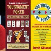 Дэвид Склански о Холдем покере