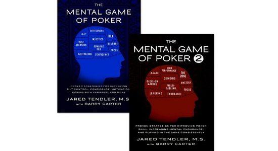 Обзор книги «Игры разума» Джареда Тендлера